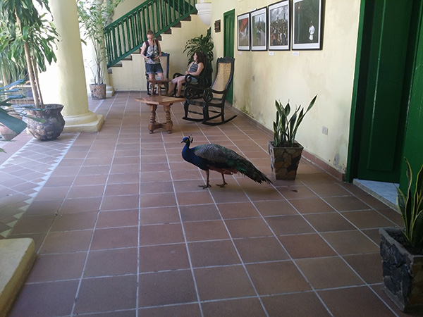 Hotel Conde Villanueva